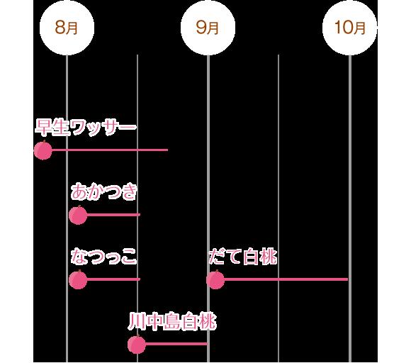 収穫時期チャート